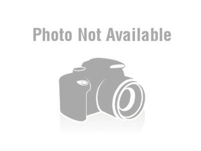 Bree Minard