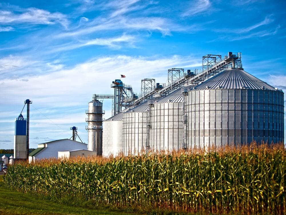 corn industry