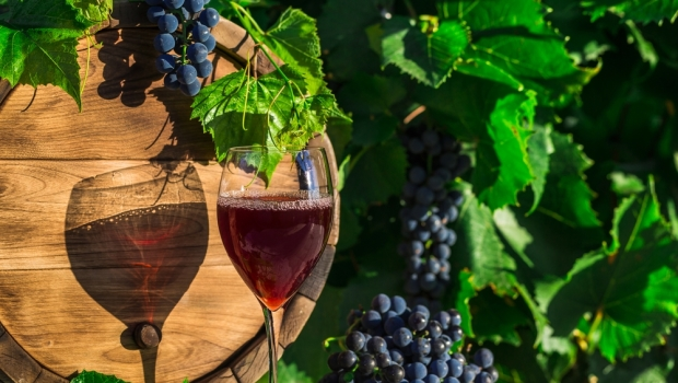 The wine industry is one area that could benefit from small business growth.
