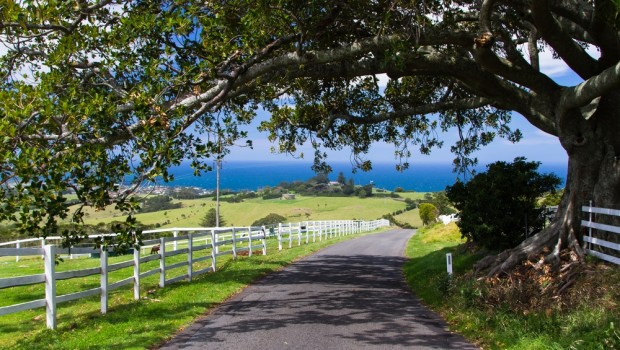 Australia's rural property is seeing its value boosted, in part thanks to a diverse spectrum of buyers.