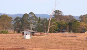 Could a small piece of rural real estate be a good investment choice?