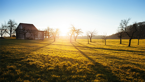 Rural-holiday-home image