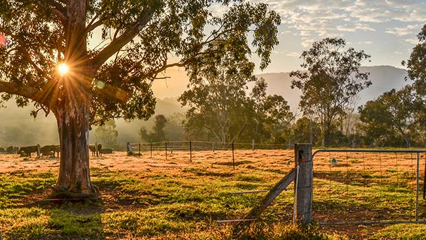 Rural-PM image