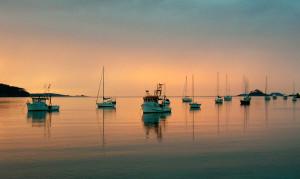 Batemans Bay net