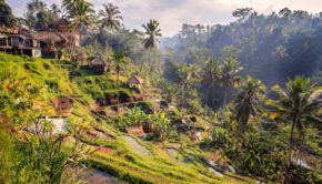 Bali is a fascinating island packed with unique landscapes.