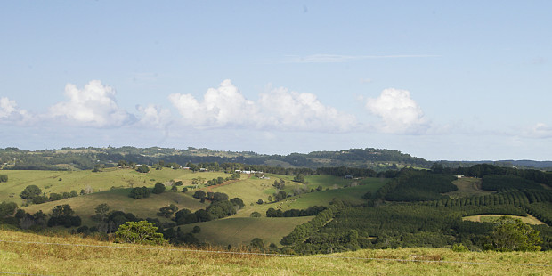 Types of Farms in the Bangalow Region